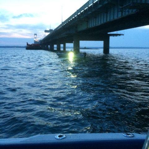 Newport Squid2015 4