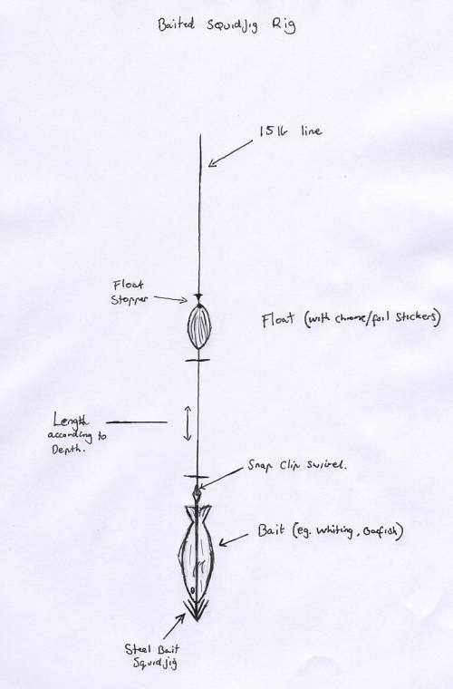 squid fishing rigs - general squid fishing chat - squid fishing forum, Reel Combo